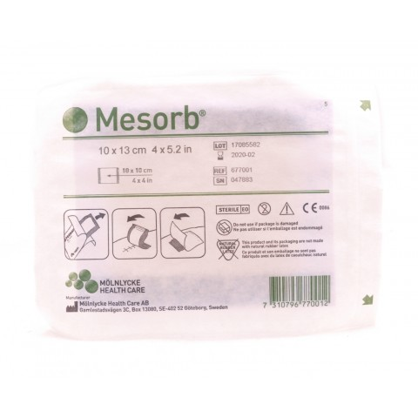 Mesorb Wound Dressing 10 x 13 cm
